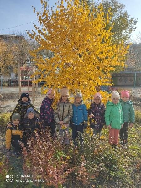 Золотая Осень !!!